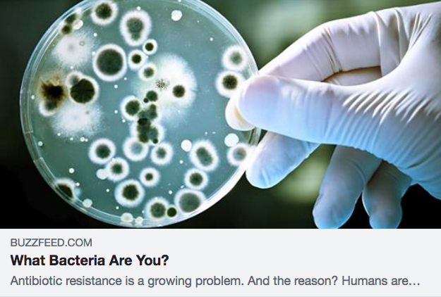 Buzzfeed Quiz: What Bacteria Are You? Team: Alexis Villani, Alicia Sanchez Martinez, Kristine Nguyen, and Rinavien Odina; University of California, Irvine. To take the quiz,  click here .