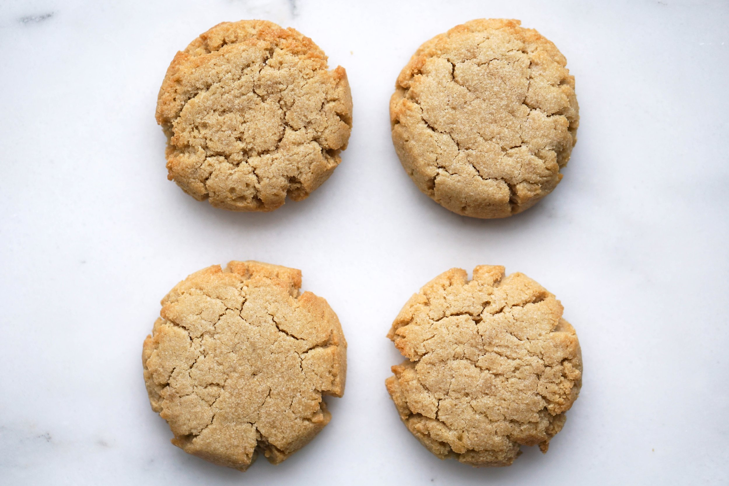 The No Sugar - Sugar Cookie Now Available on Amazon.com