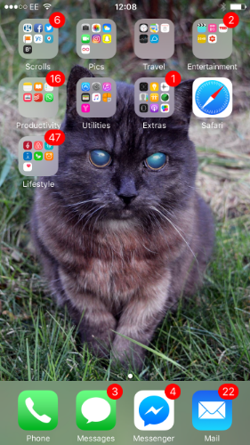 Cat wallpapers are the in thing right now, I promise!