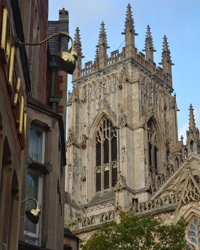 Trying to get a glimpse of the peregrine falcons that live on top of the Minster here in York.