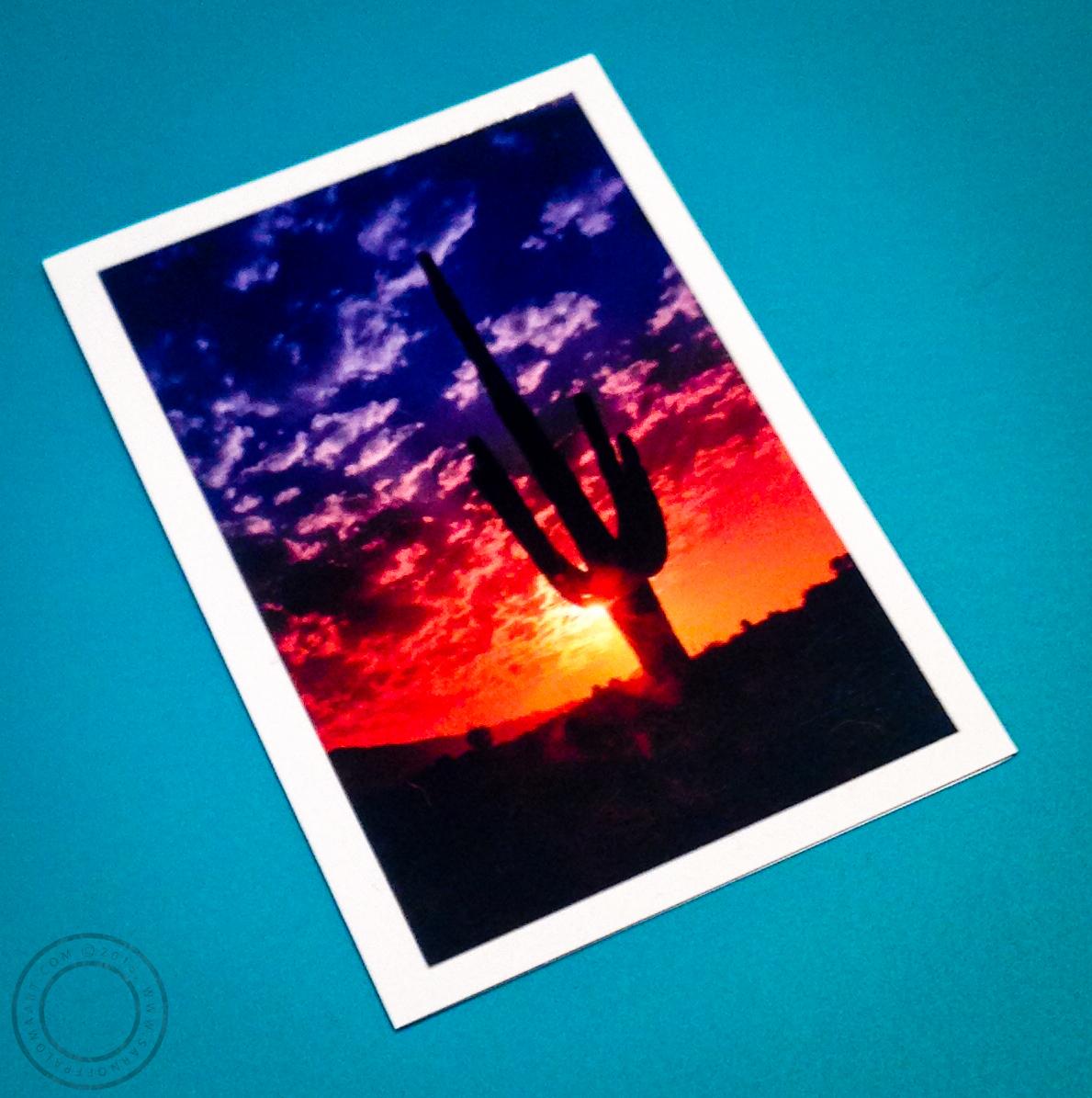 Desert Photography postcard- $3.50