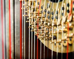 harp strings.jpeg