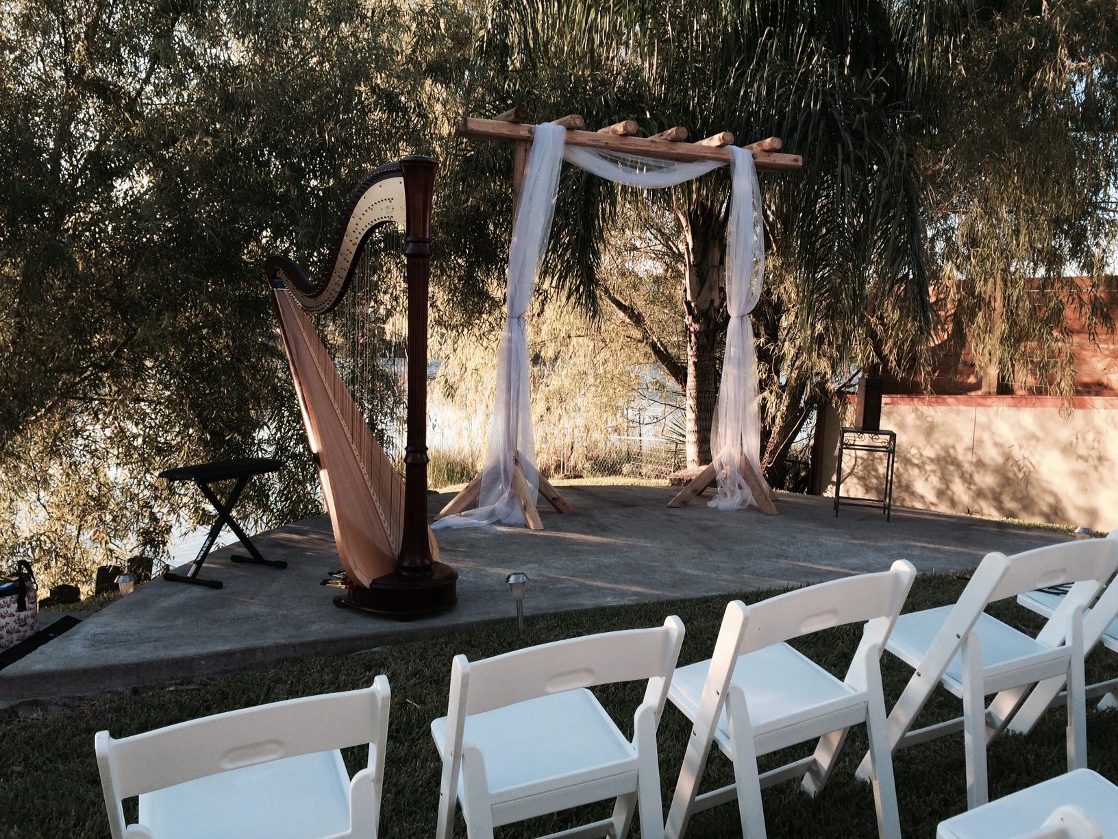 harp wedding 5.jpg