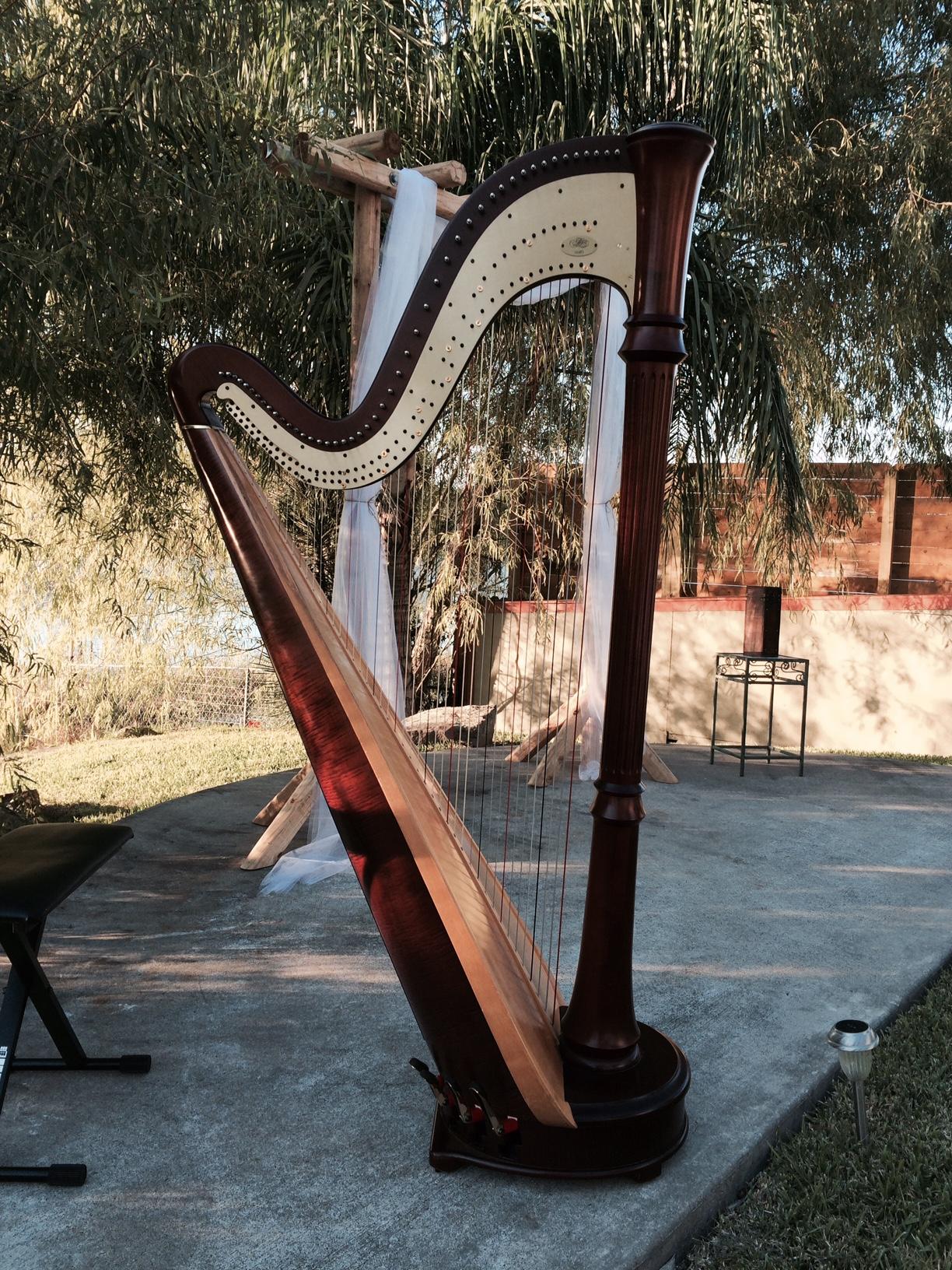 harp wedding 3.jpg