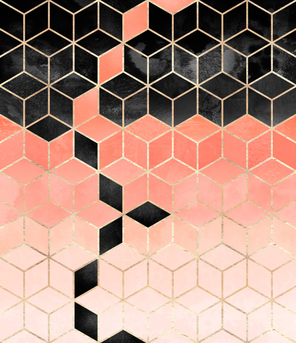 Black And Coral Cubes