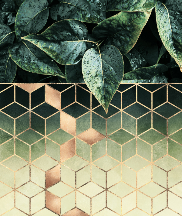 Leaves And Cubes 2