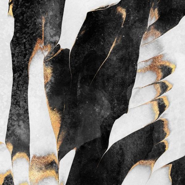 Black_ig.jpg