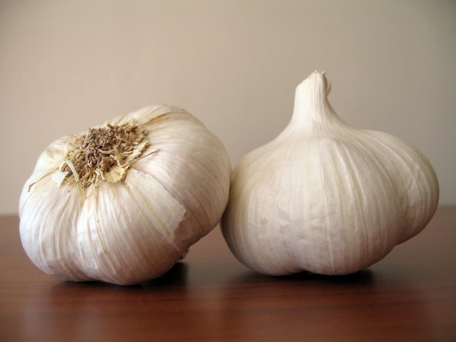 Garlic1.jpeg