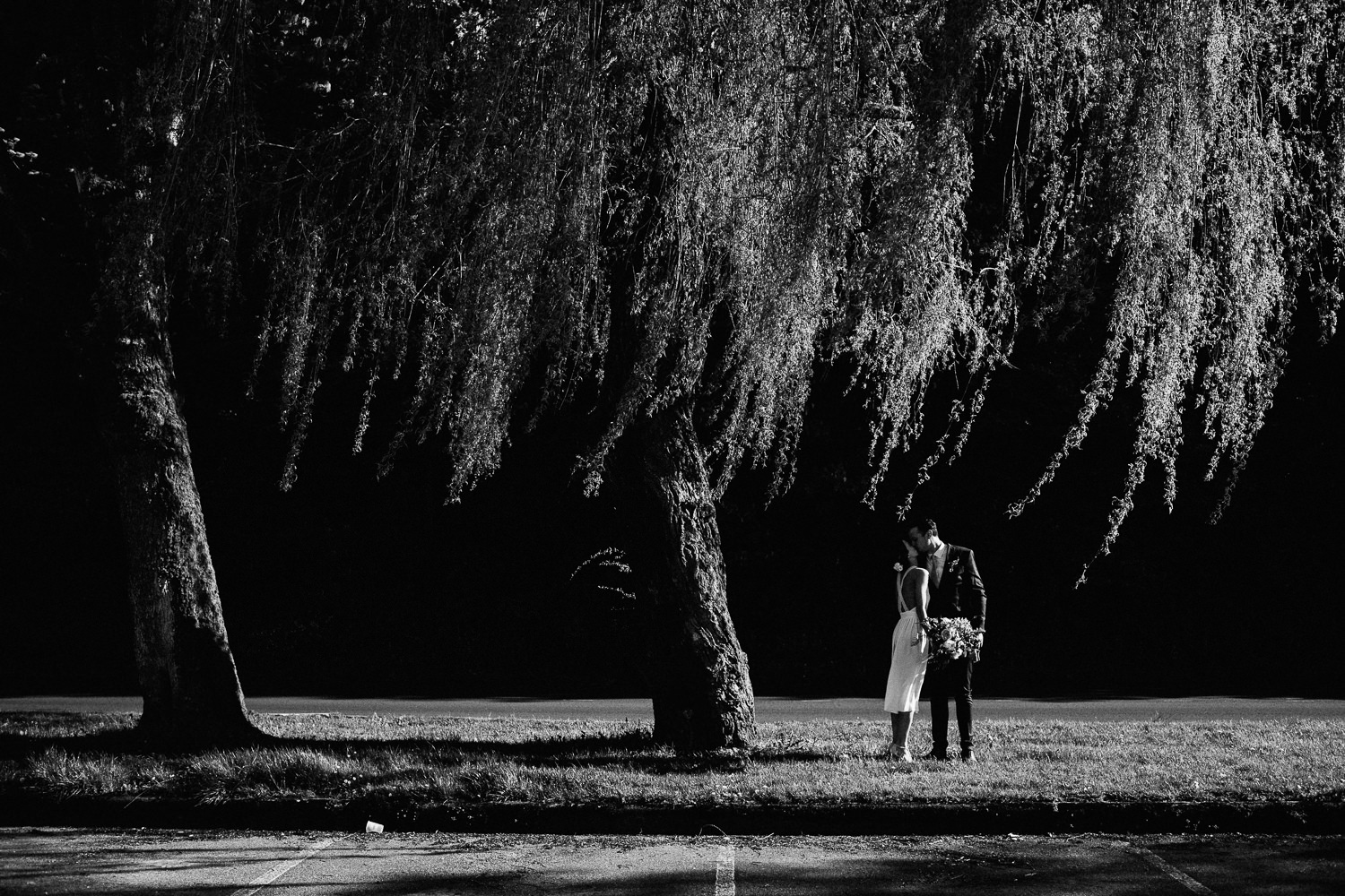 bride and groom under a large wheeping willow
