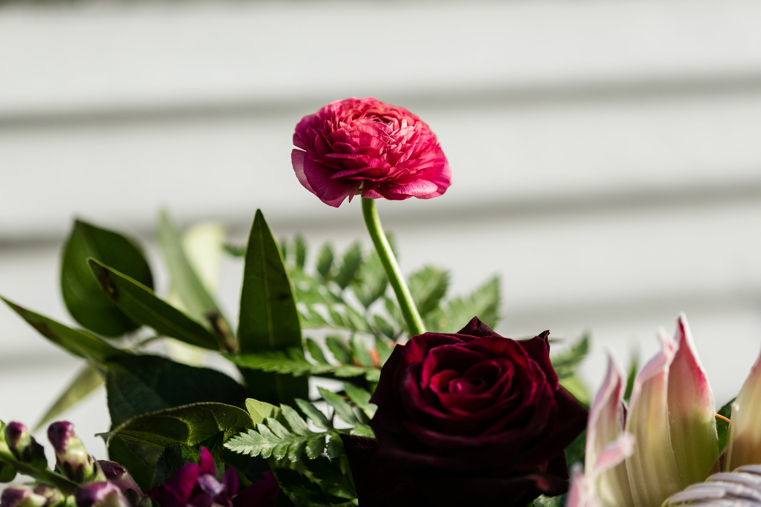Celebrate Dallas Floral and Planning 2017 0012.jpg