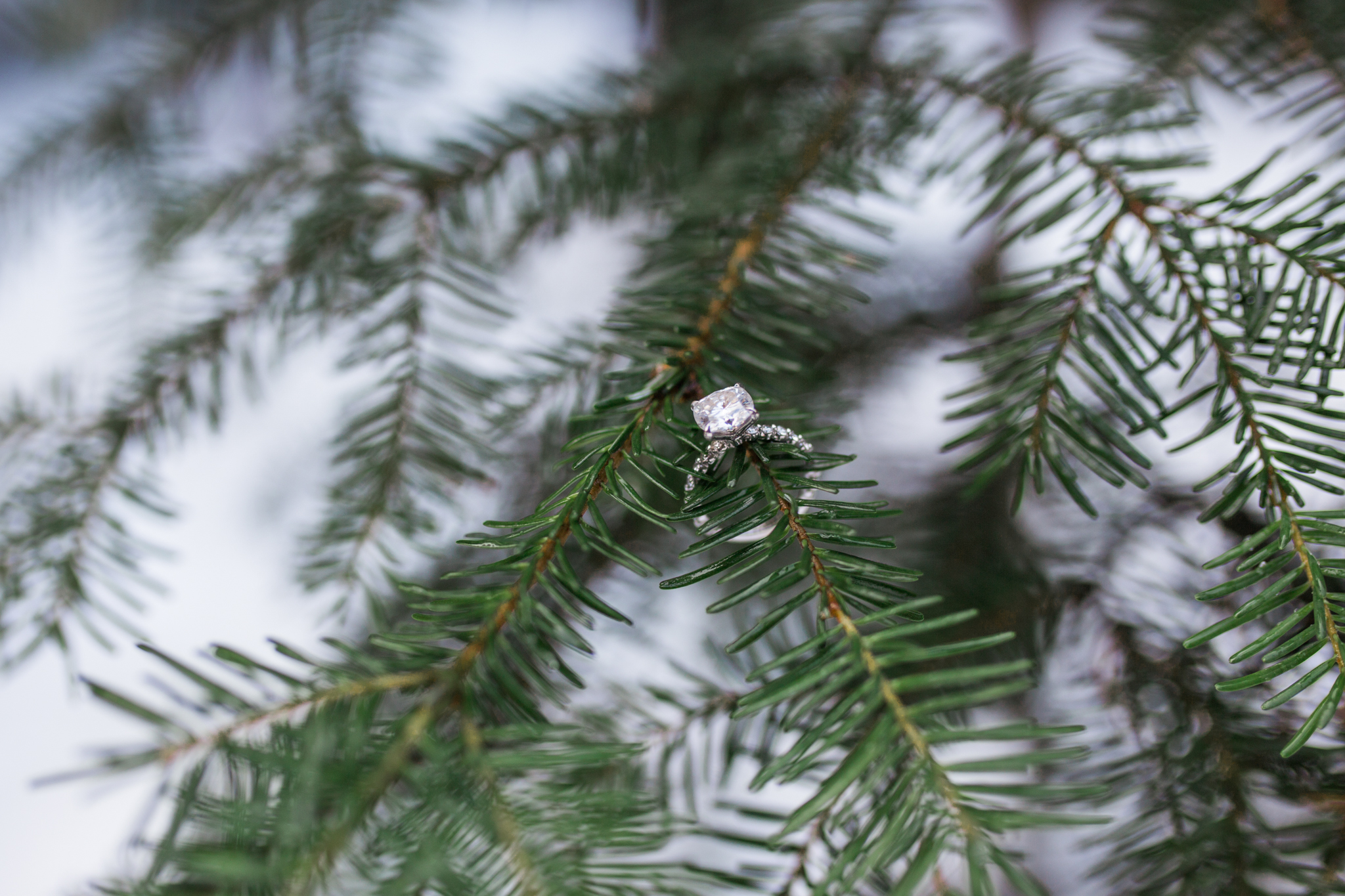 Trillium Lake Snowy Mt Hood, Oregon Engagement Session Engagement Ring Detail Photo.jpg