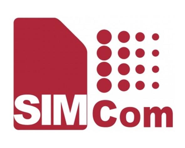 SIM.jpg