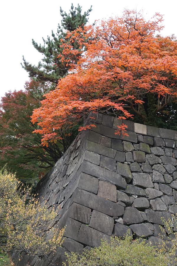 November textile tour Japan 2.jpg