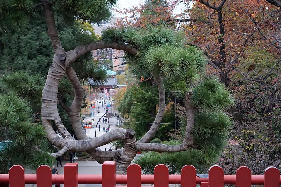 November textile tour Japan 9.jpg