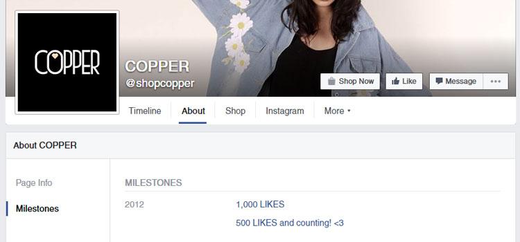 COPPER Facebook Milestones