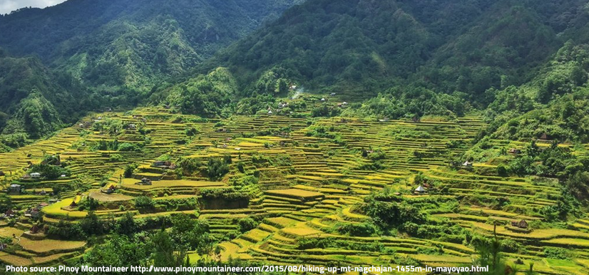 Photo source: Pinoy Mountaineer