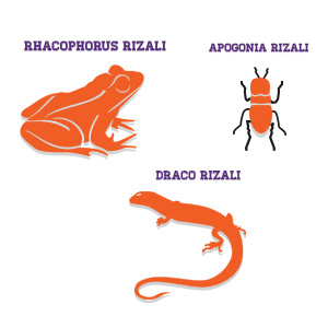Three Species named after Dr. Jose Rizal