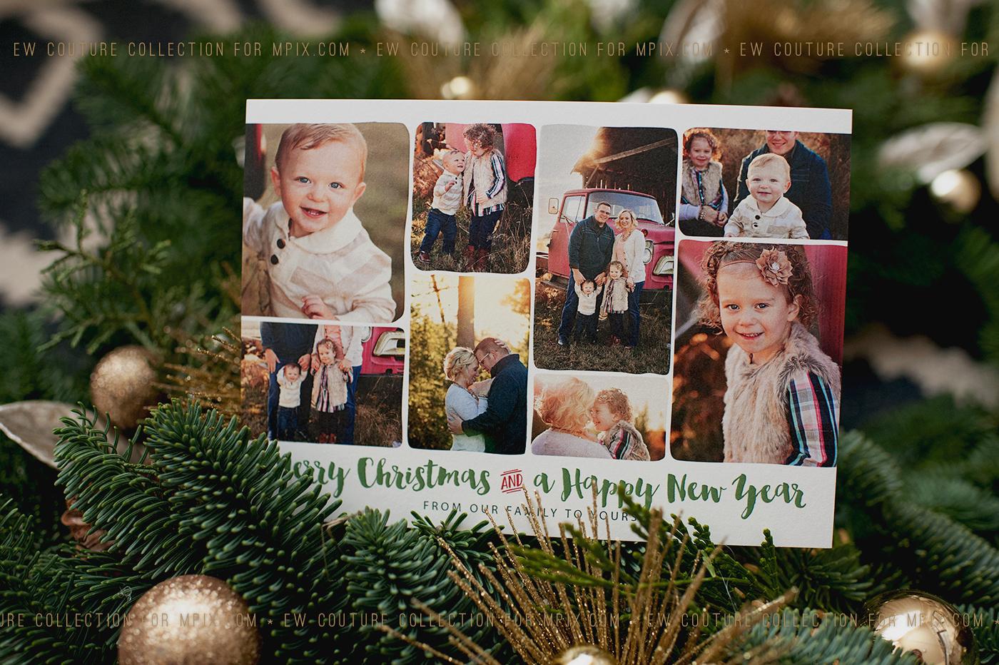 showcased images courtesy of www.n-ephotography.com / Nicole Eisert-Eastman