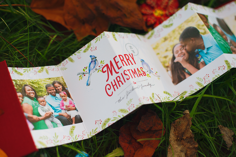 bluebird-couple-3-elena-wilken-mpix-christmas-mini-accordion.jpg