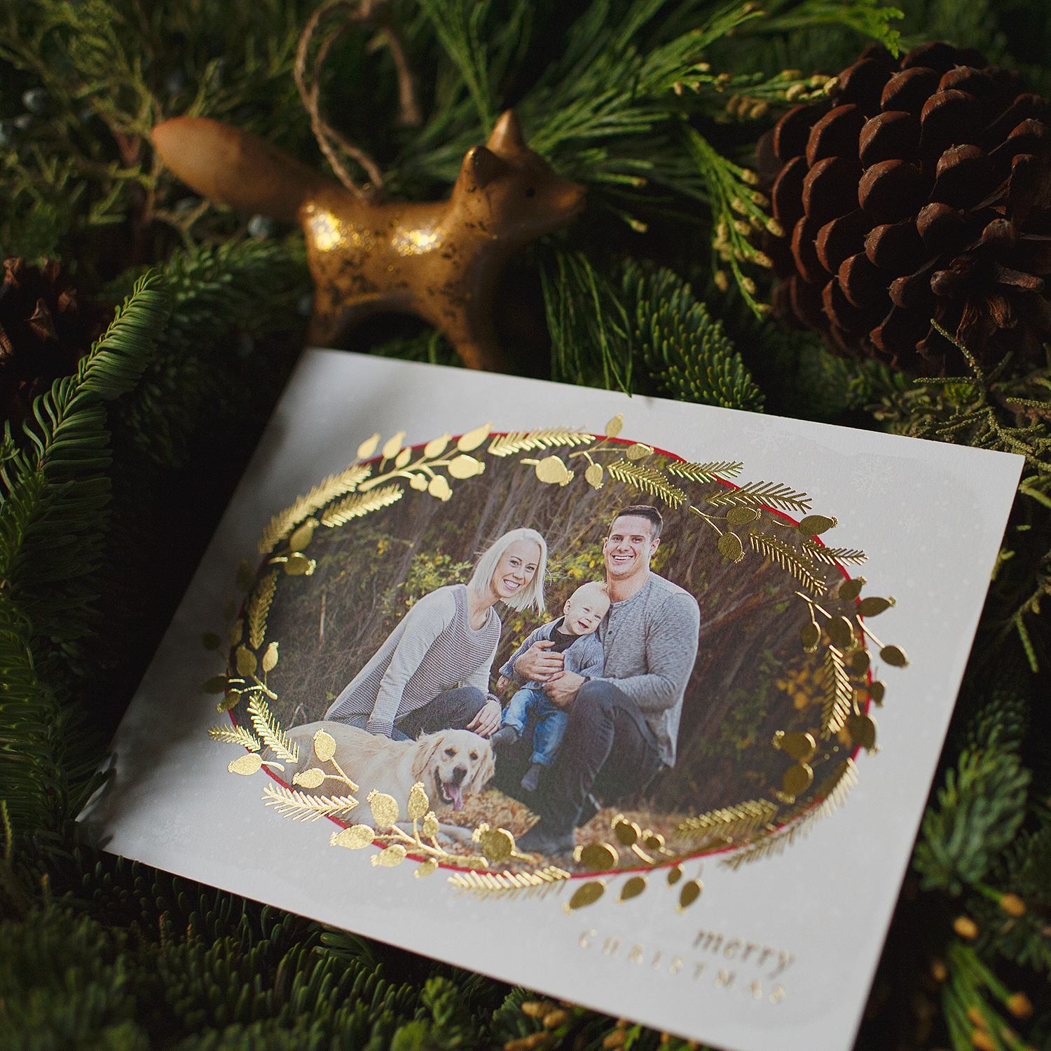 ...Sparkly berry wreaths in silver, gold or red... customize your Mpix foil cards with either, or make a few smaller orders and enjoy all three foils!