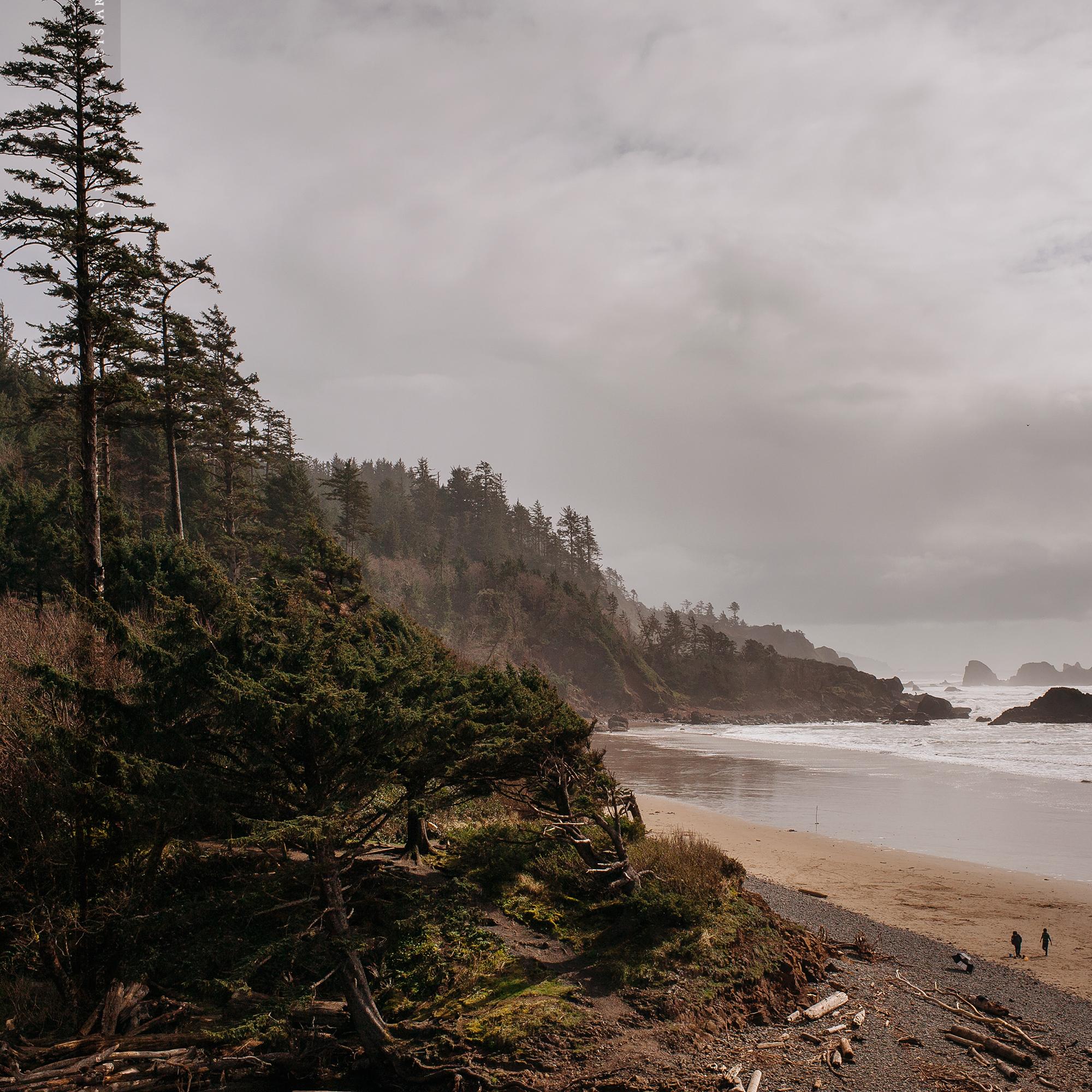 ecola-state-park-cannon-beach-oregon-coast-elena-wilken.jpg