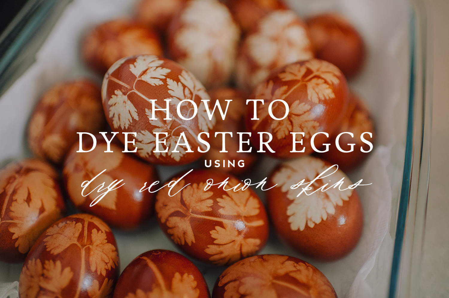 easter-eggs-organic-dye-onion-peels-elena-wilken1-HOW-TO.jpg