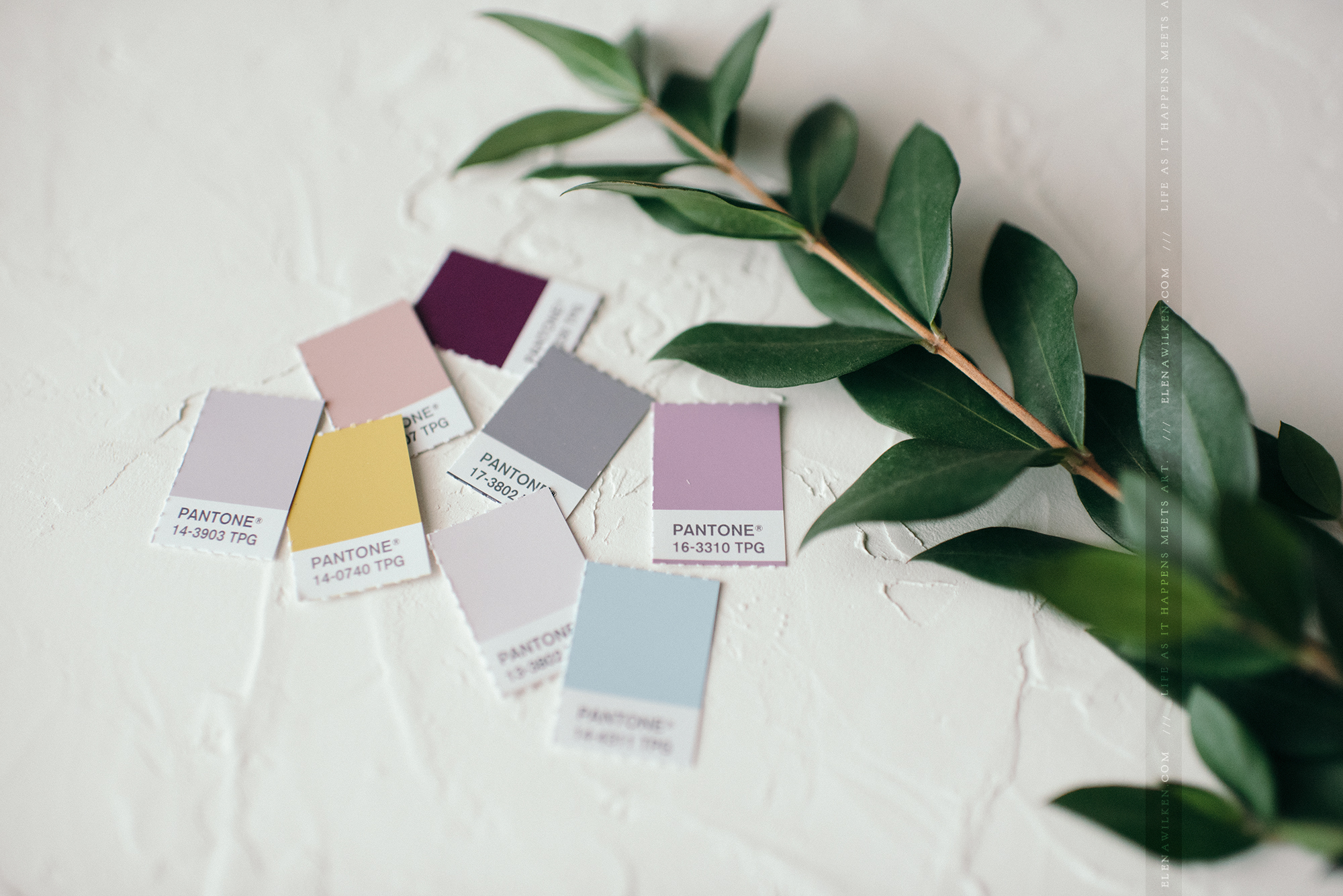 branding-ew-couture-pantone-color-palette.jpg