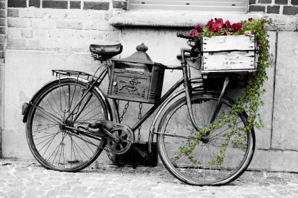 Ypres-Bike-430x286.jpg