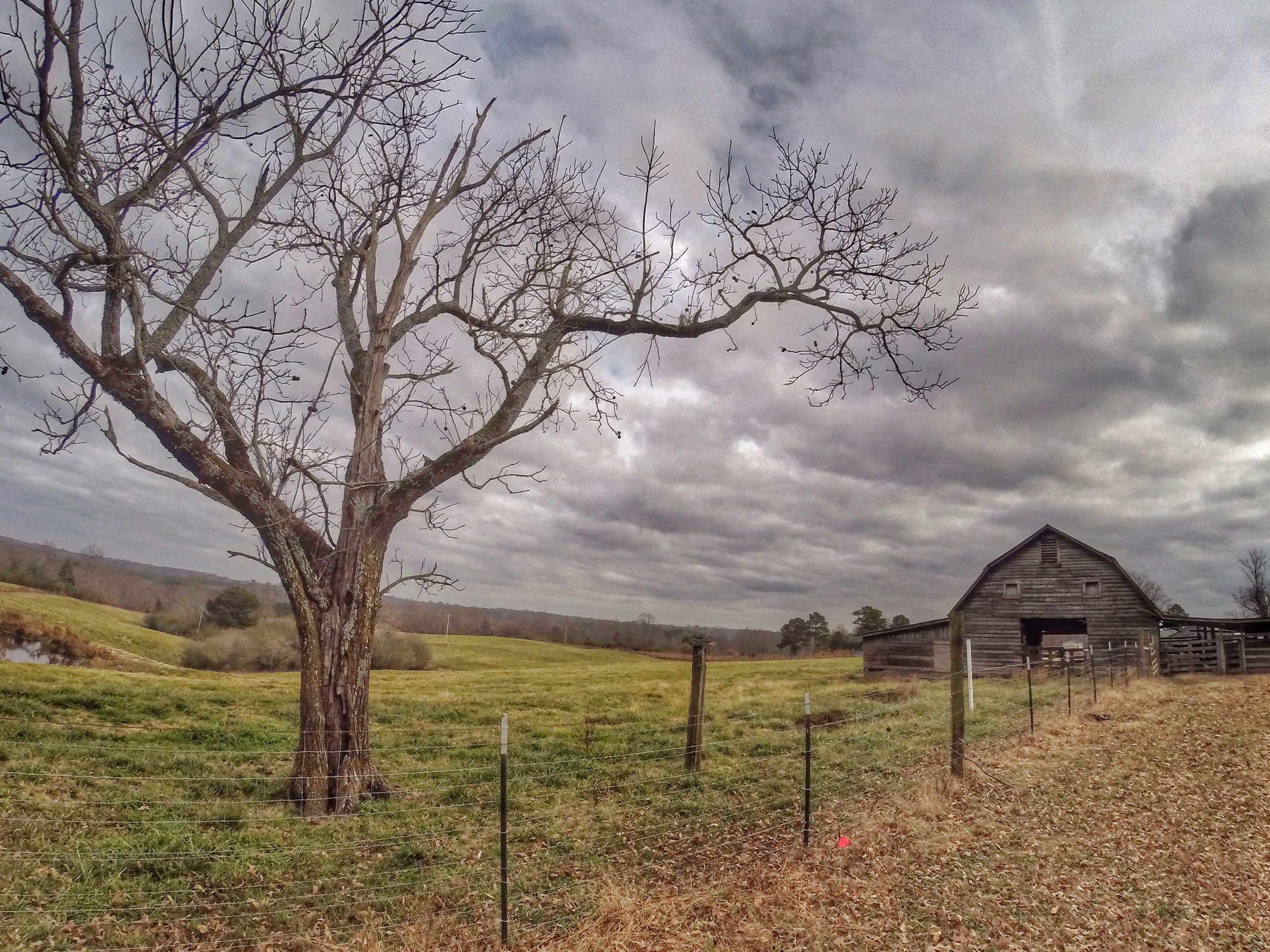 Barns of Winston County