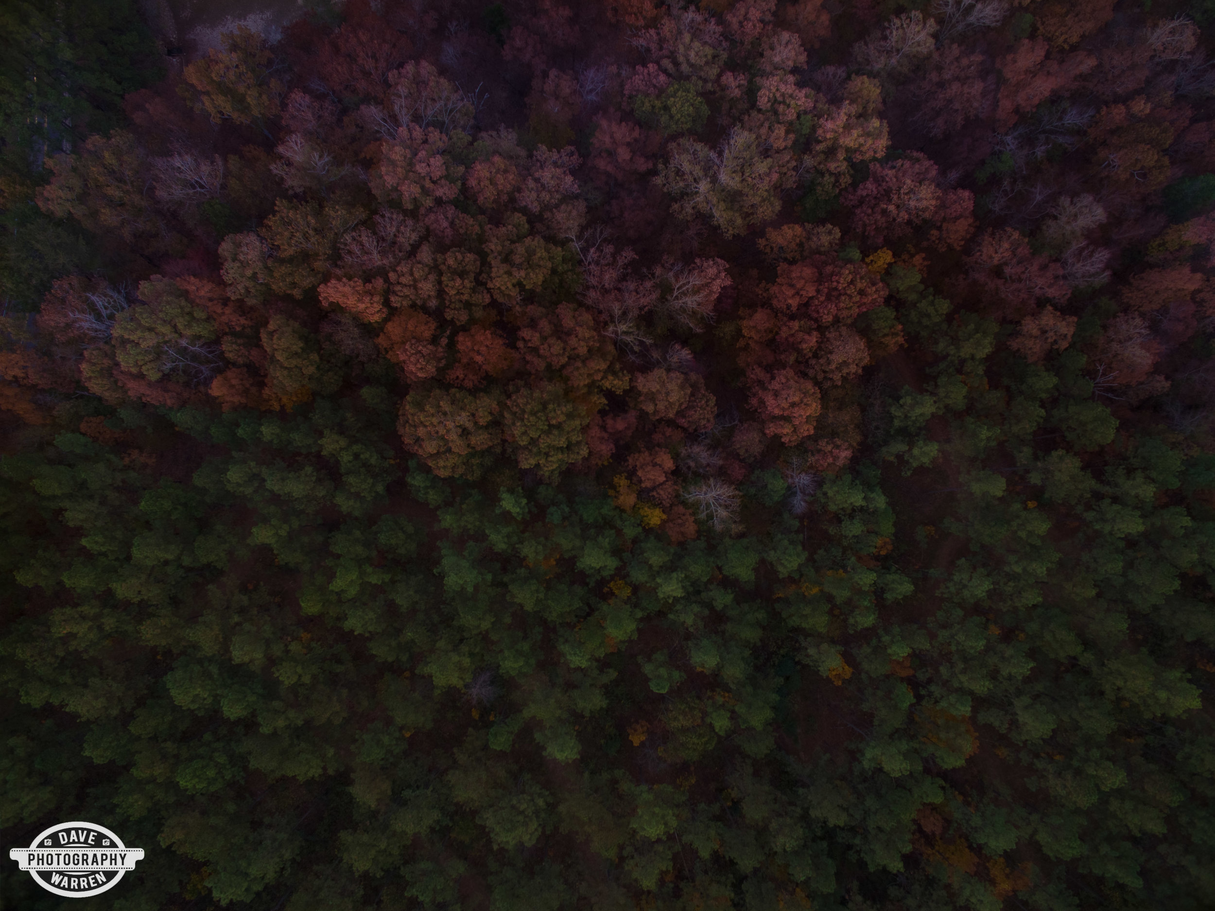 dave-warren-cullman-aerial-photography-cullman-county--9.jpg