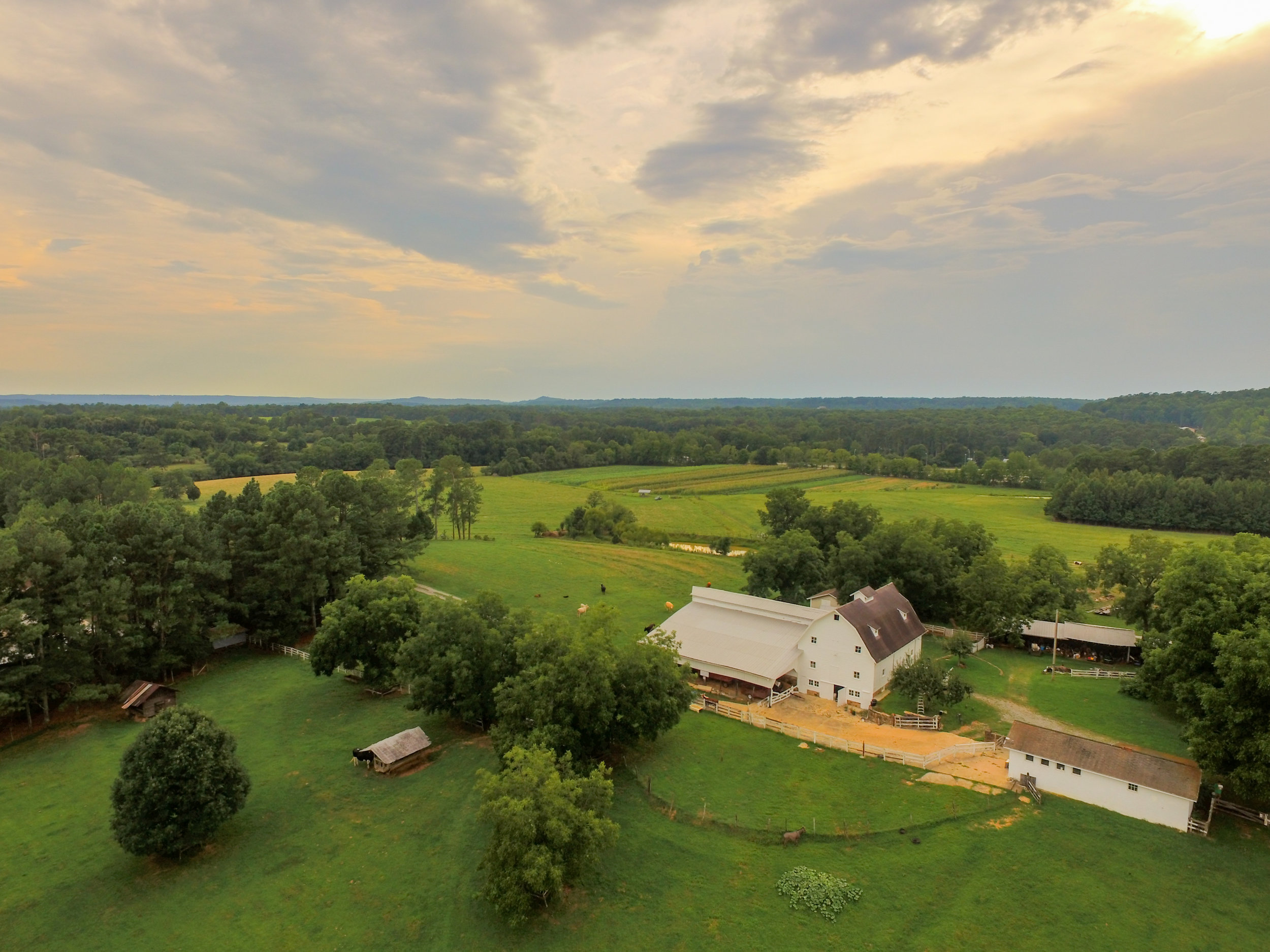 dave-warren-cullman-alabama-aerial-photography-peinhardt-farms-1.jpg
