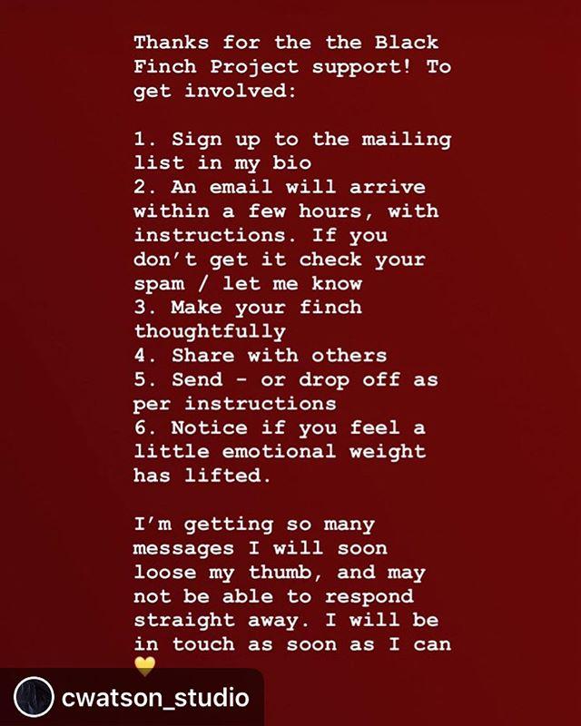 Contact — amanda carson