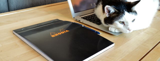 When my laptop (cat warmer) is taken over, I always have something handy to write with nearby.