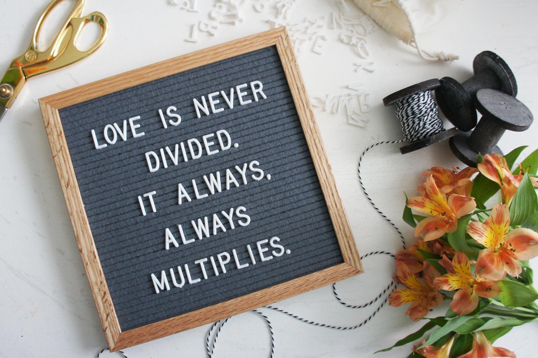 """Love is never divided. It always, always multiplies."" -Shannan Martin"