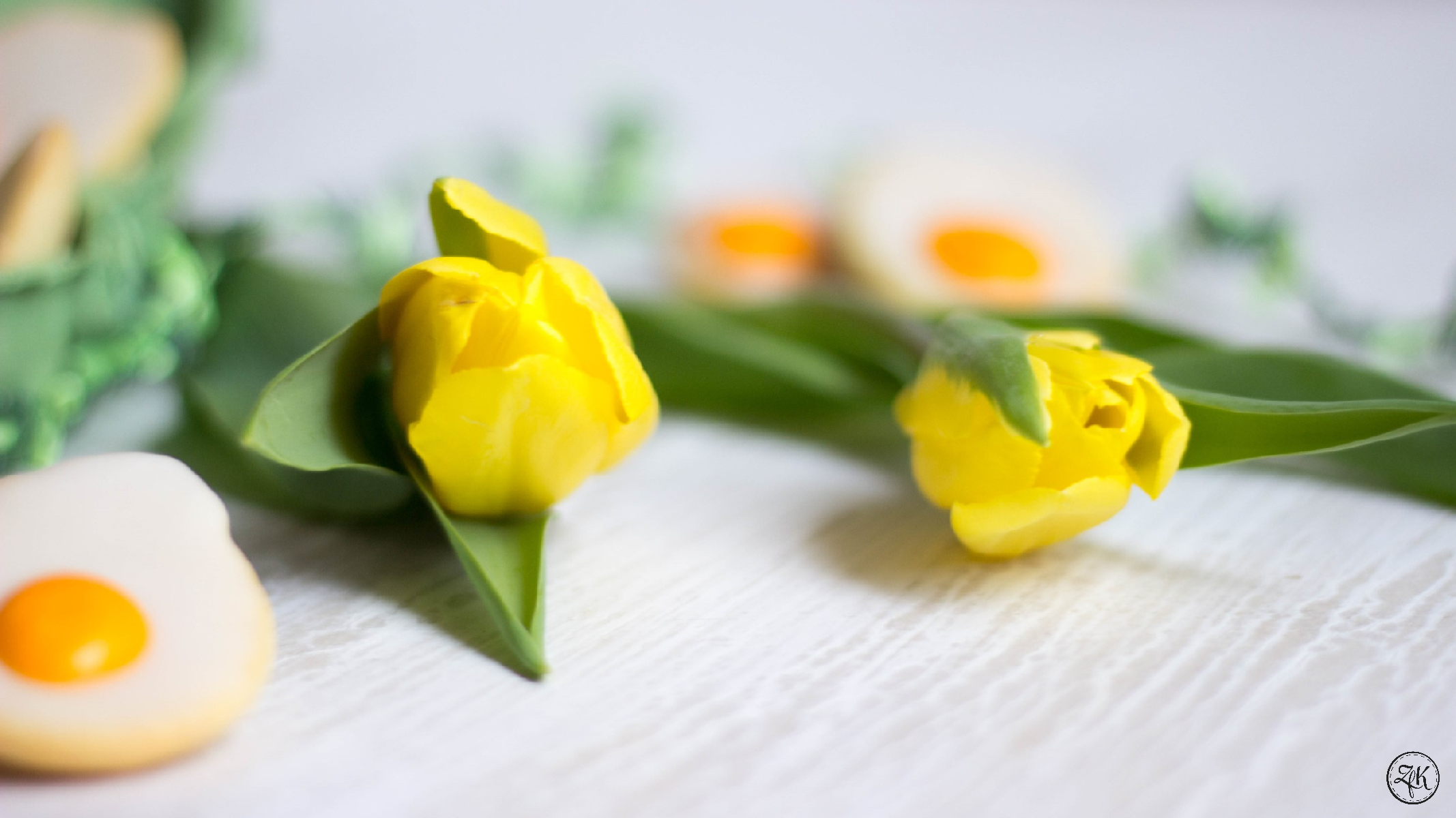 Willkommen Frühling!