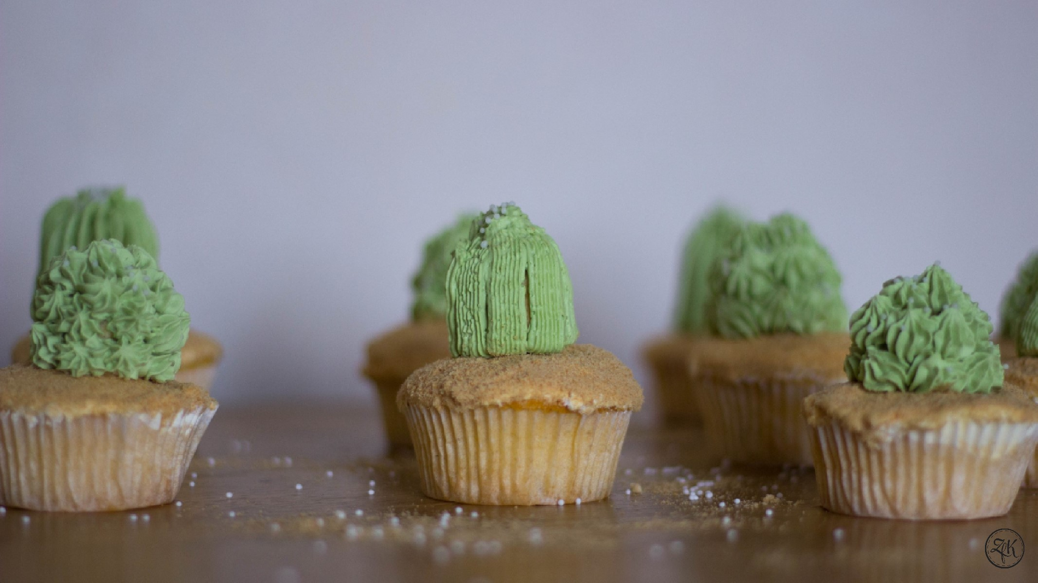ZfK_Kaktus_Muffins_01