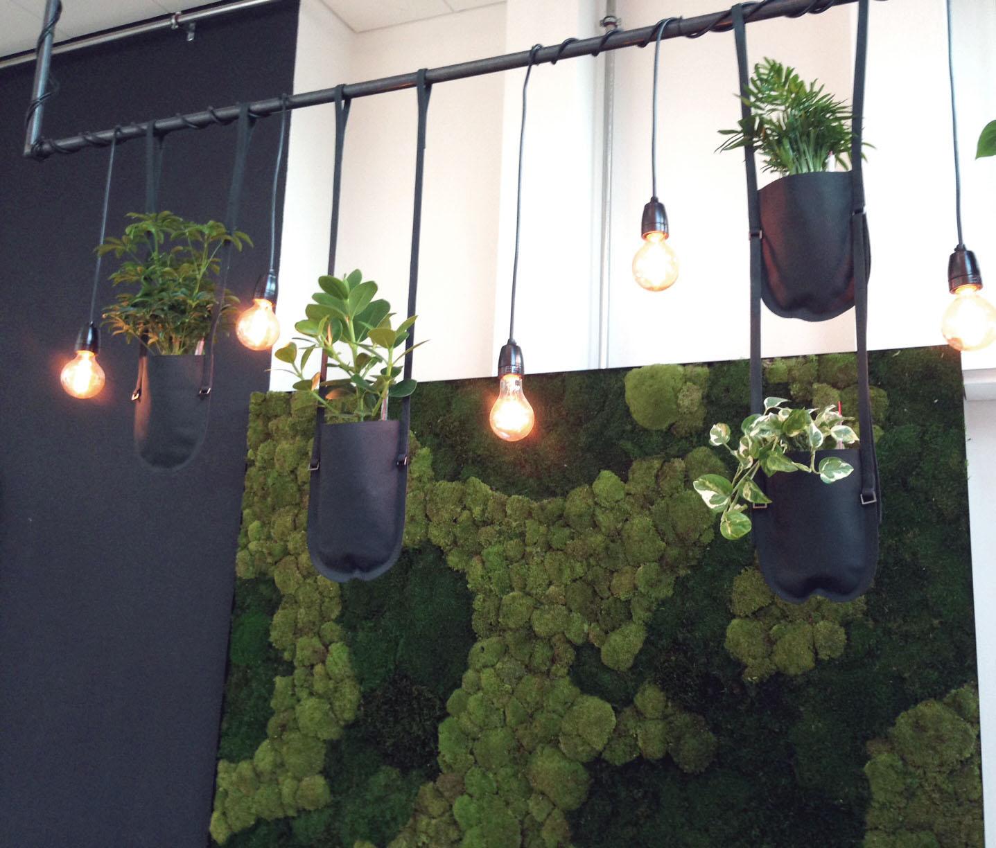 Beleuchtung Design: Mia Kepenek,Hydroplant vertikale Pflanzenwand und Authentics Pflanztaschen