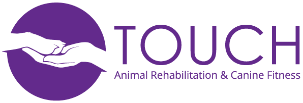 touch-animal-logo.png