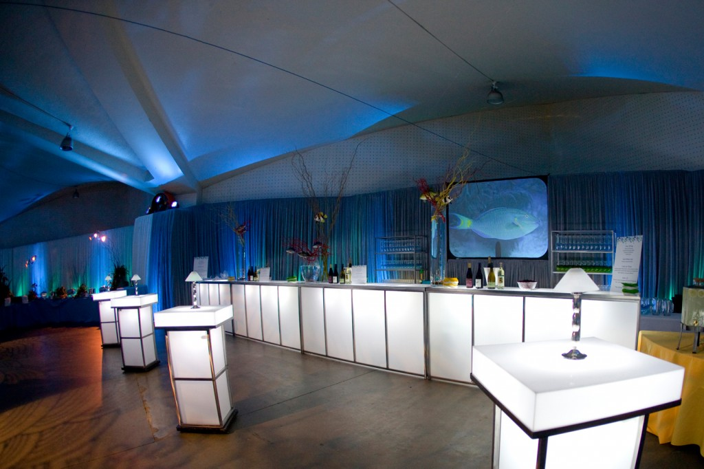 abd-meetings-events-alegria-by-design-corporate-santa-barbara-under-the-sea (12).jpg
