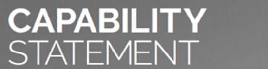Capability-Statement-Iconv1.PNG
