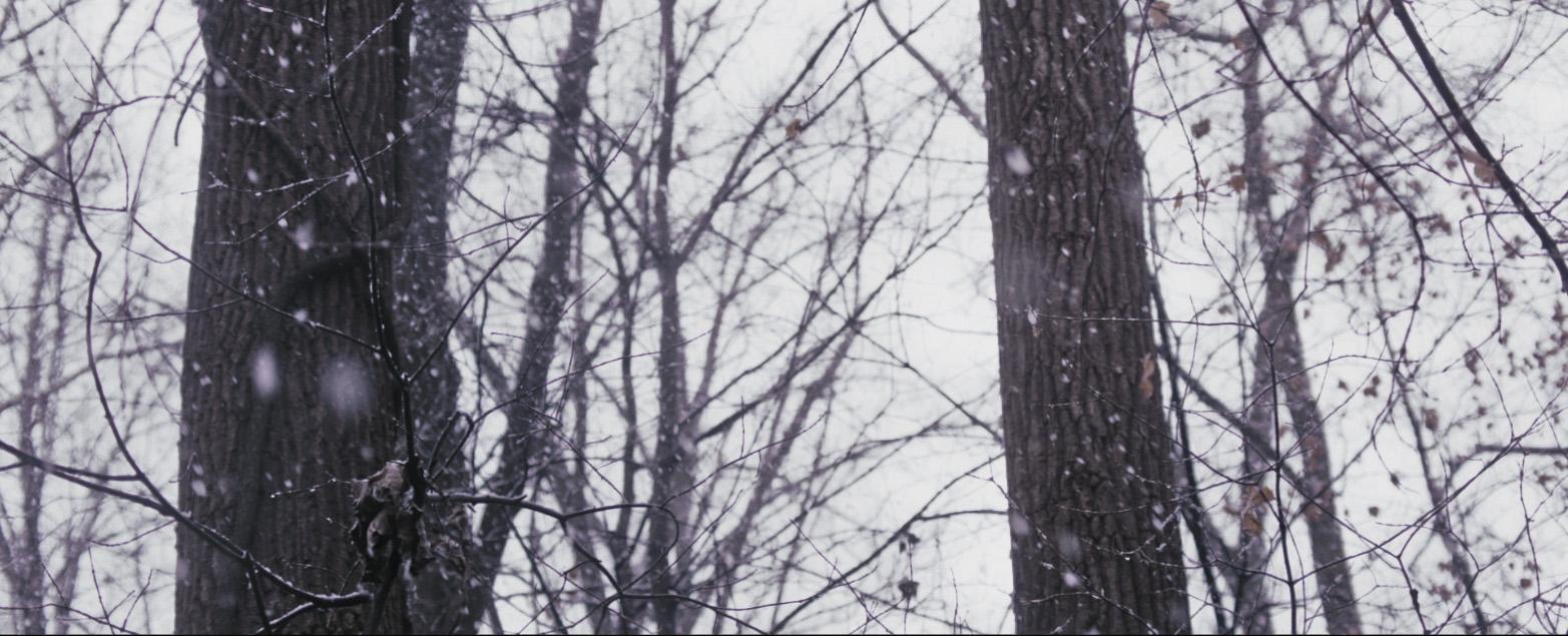05_Snow_1.jpg