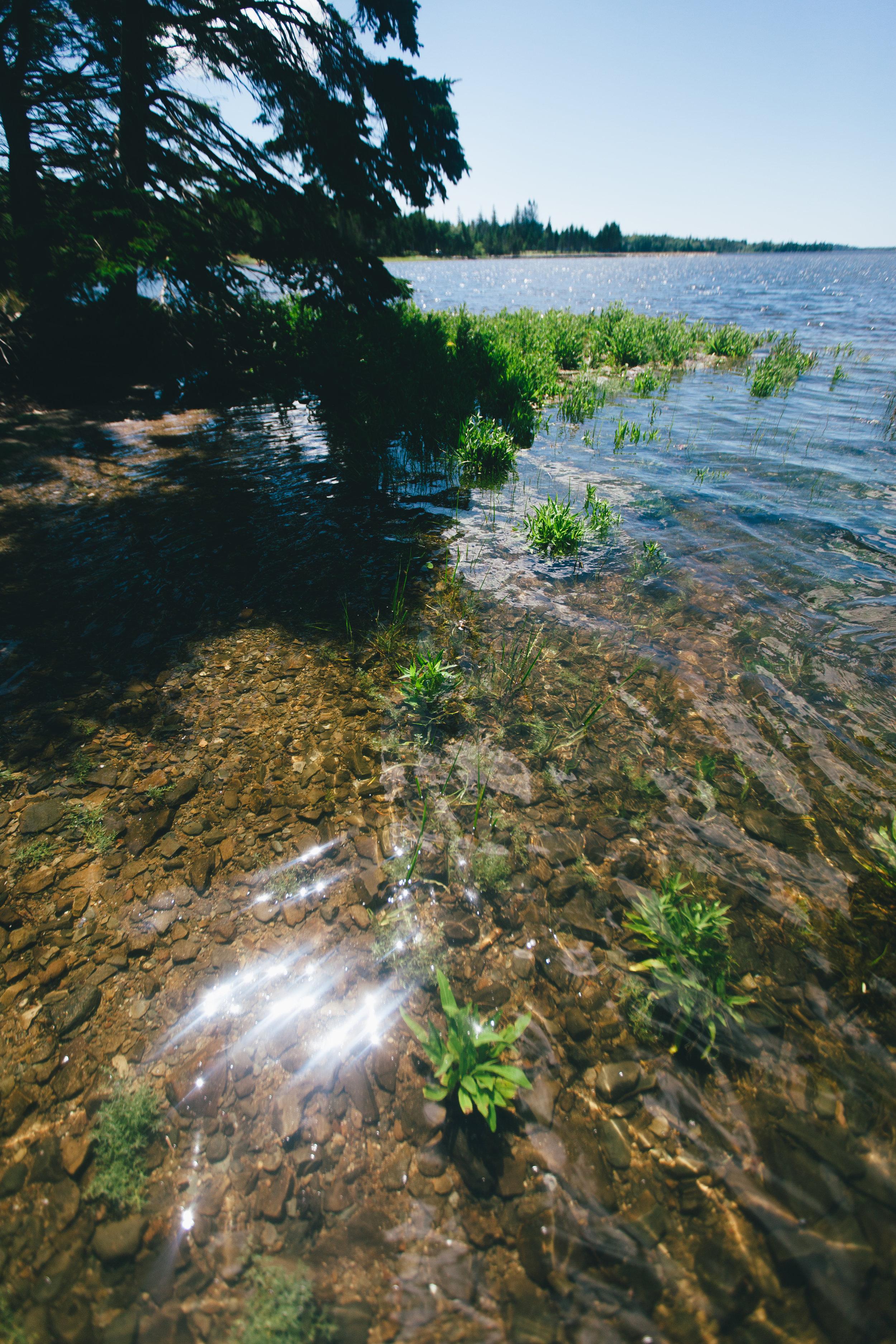 WaterShimmering.jpg