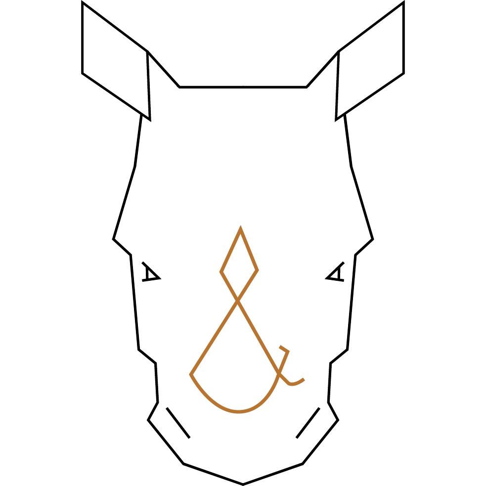 Rhino-Alone.png
