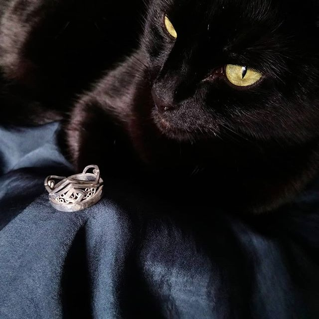 Most recent creation is this filigree ring! Pamela wanted to be involved, possibly because the ring looks like a little crown for her :) definitely going to make more of this filigree malarkey! ▪ ▪ ▪ #filigree #silverjewellery #kitty #blackcat #lucky #tiny #crown #queen #yaasqueen #styleicon #catsofinstagram #shiny #soft #prettygreeneyes #Sheffield #jeweller #womanartist #slinky #sheffieldartist #luxurious #lifestyle #potd #fashionblogger #handmade #ring #statement