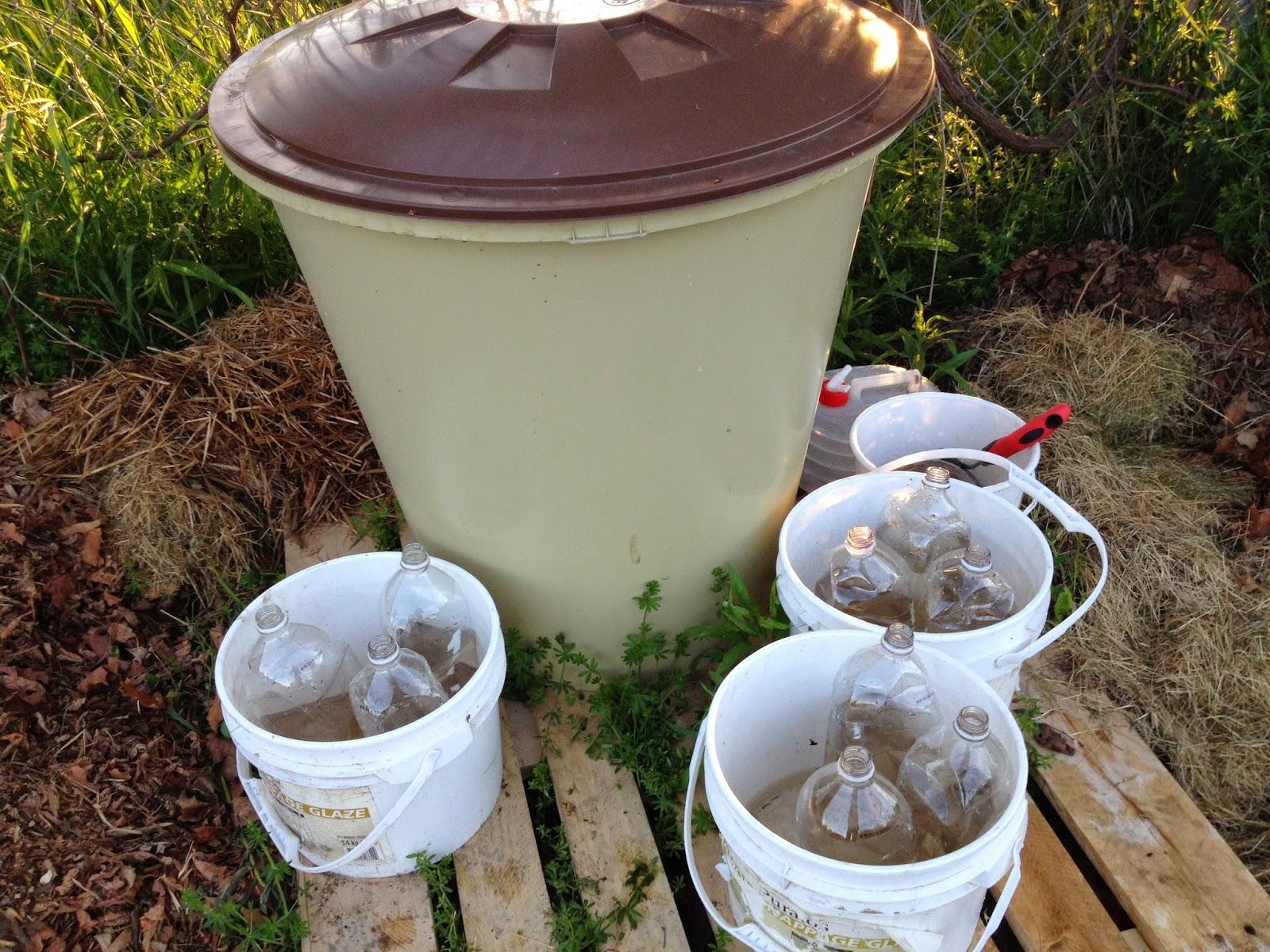 Watering Set Up.JPG