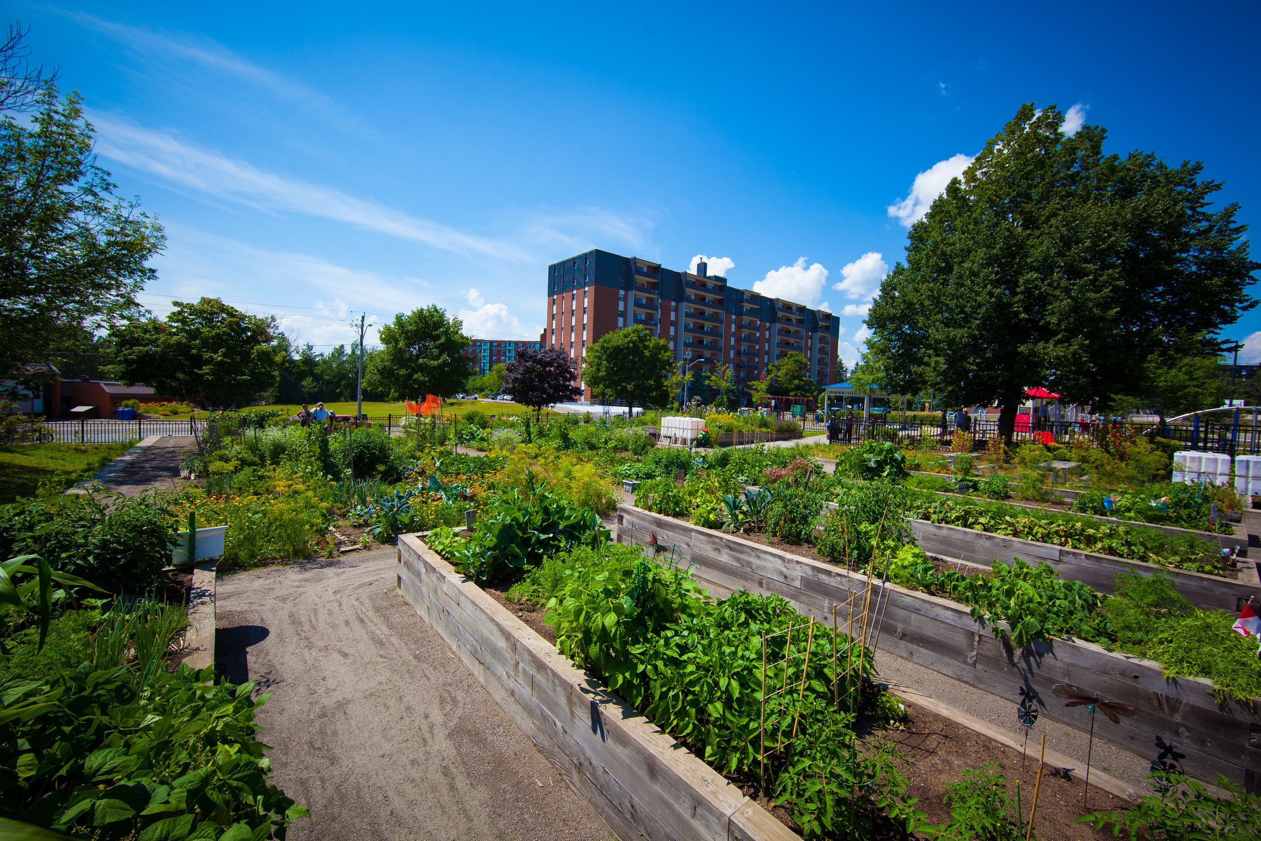 GardenTour2015-50.jpg
