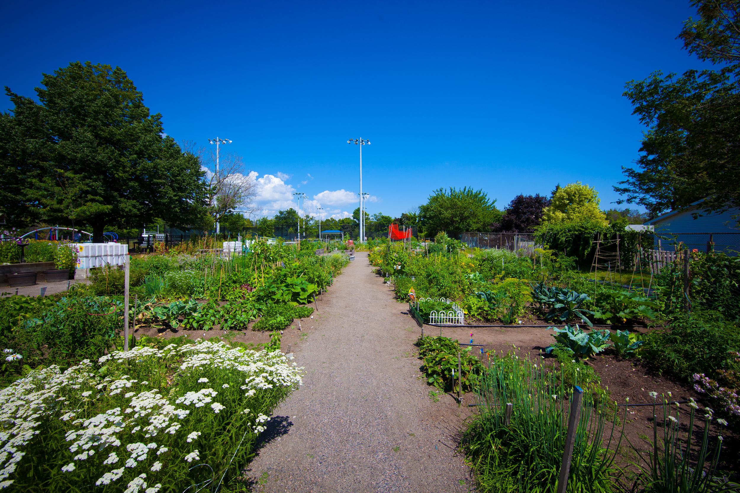 GardenTour2015-54.jpg