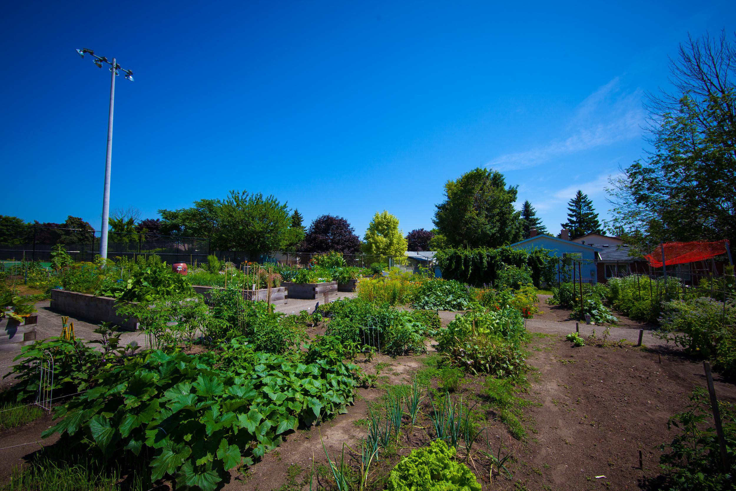 GardenTour2015-59.jpg