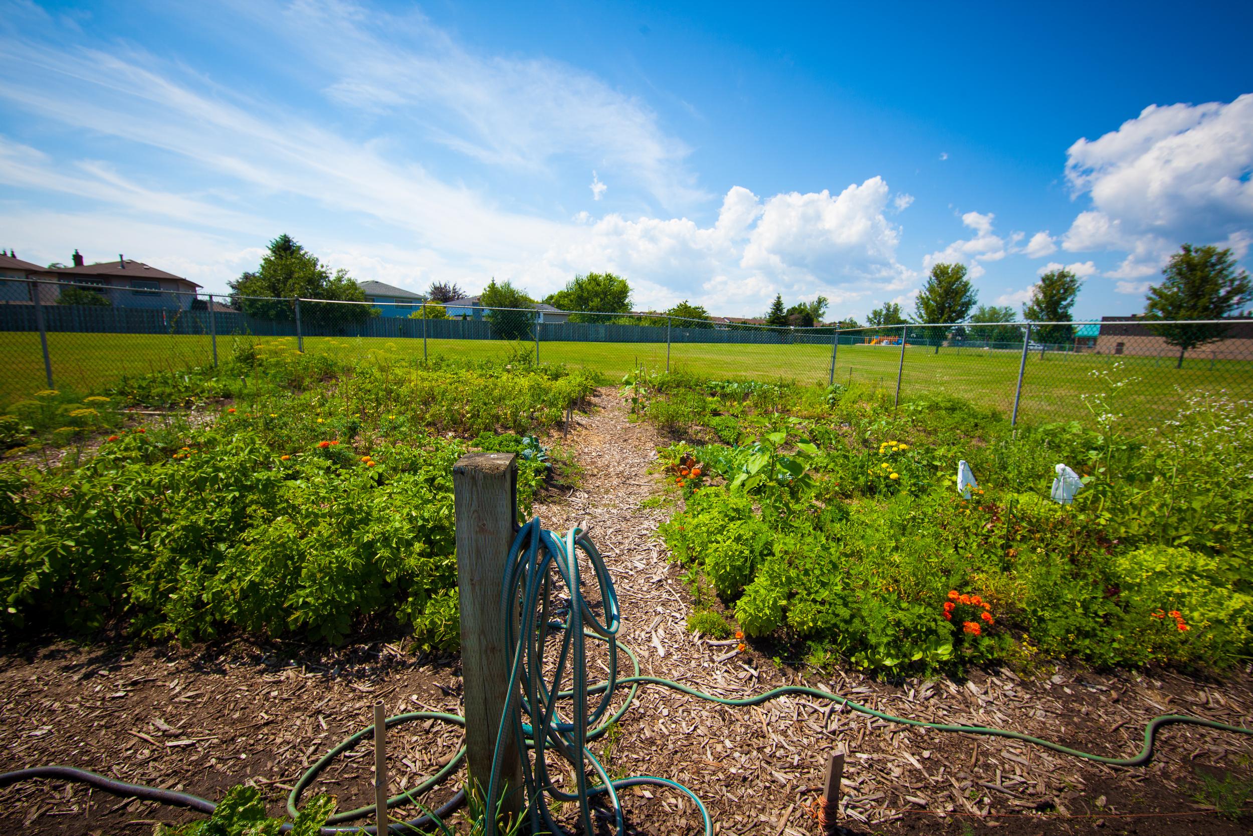 GardenTour2015-60.jpg