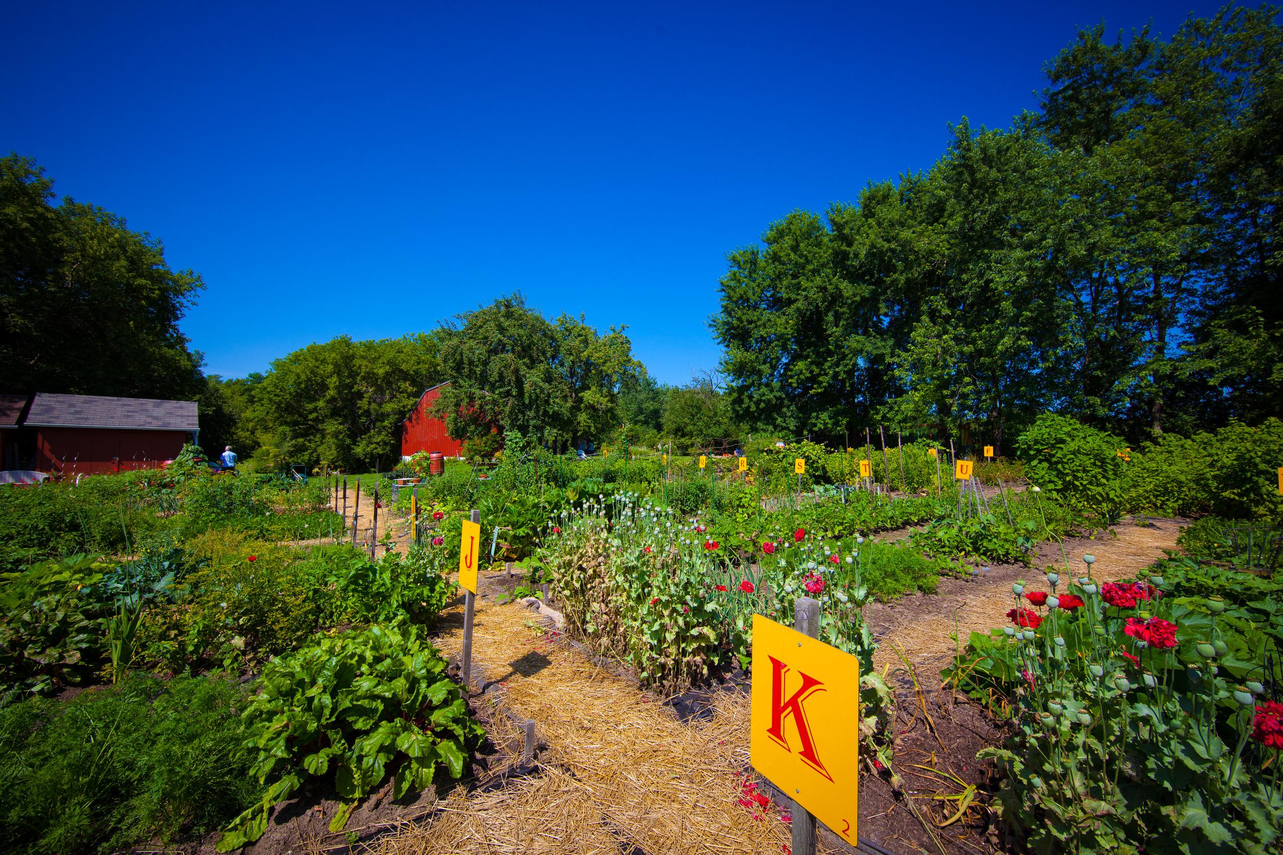 GardenTour2015-17.jpg